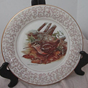 Vintage Don Whitlatch Gorham Limited Edition Decorator Plate with American Woodcock