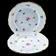 Carl Teichert Meissen Plate in Scattered Flowers Pattern