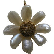 Edwardian Mississippi River Pearl Daisy 14k Brooch/Pendant