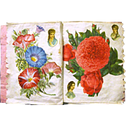 "Grandma Allen Makes ""Flower Scrapbook"" for Frankie Mains, 1897"