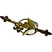 REDUCED 1902 Brooch with rare  CHESTER  English Hallmark