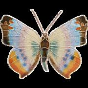 Elegant Sterling Cloisonne Enamel Butterfly Brooch Pin