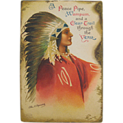 Native American Ellen Clapsaddle Embossed Postcard