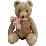 1950's German Teddy Bear