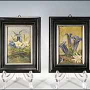 Pair of Diminutive Floral Paintings - Gentian - Edelweiss - Dianthus - Bluebells