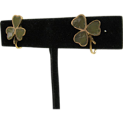 SALE Victorian era 9 CT Gold Shamrock Earrings Connemara marble