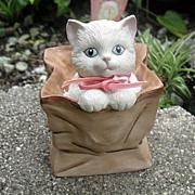 White Kitten in Brown Bag Music Box SFMB