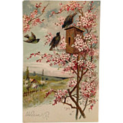 SOLD Embossed Postcard-Blossom Time For Gilded Birds In Birdhouse - Red Tag Sale Item