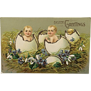 """Fantasy Easter Postcard """"Hatched"""" Babies And Chick With Glitter"""