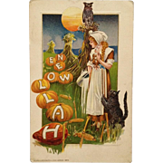 Schmucker Halloween Postcard Milk Maid In Pumpkin Patch With Cat And Owl