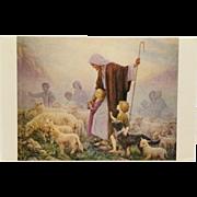 Loving Shepherd- Margaret Tarrant Postcard