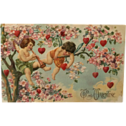 Playful Cupids In Valentine Tree Postcard