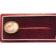 Victorian shell Cameo tie pin set in fourteen karat gold