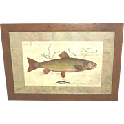 "Fish Print ""Upstream"" framed"