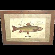 """Fish Print """"Upstream"""" framed"""