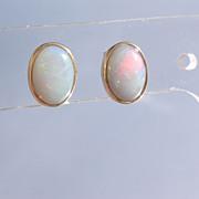 14kt Yellow Gold Fiery Oval Opal Stud Earrings