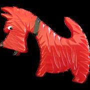 Vintage Red Bakelite Scottie Dog Pin, Signed JL Foltz