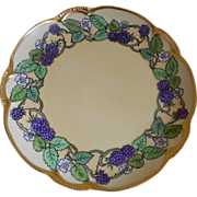 Charlotte, Hutschenreuther, Bavaria Arts and Crafts Plate, 1890 - 1910