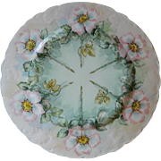 Rosenthal and Company, Tilly, Bavaria,  Hand Painted Plate, 1891 -1906