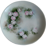 Hutschenreuther Selb Bavaria Hand Painted Plate, Artist Signed, 1912 - 1920