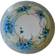 SALE Antique Hutschenreuther Josephine China Bavaria Favorite Hand Painted Plate, 1890  until