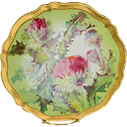 O & E G Royal Austria Hand Painted Artist signed Thistle Plate, 1898 -1918