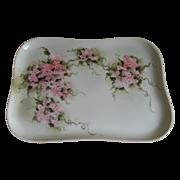 SALE Limoges France Hand Painted Dresser Tray 1900 until 1920