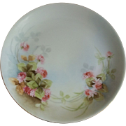 Hutschenreuther Selb Bavaria Hand Painted Plate , Artist Signed 1857-1920