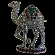 Rhinestone Shriner Camel Brooch, Masonic Jewelry 1940-1950's