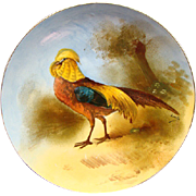 RARE Comte D Artois Limoges Game Bird Cabinet Plate Signed Louis Ca 1920