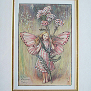 3 Framed CMB Cicely Mary Barker Vintage Fairy Illustrations For Child's Room