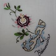 Vintage Embroidered Bermuda Islands Never Used