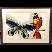 Gouche Painting Of Tropical Butterflies By Jan Olof Fellström, BA