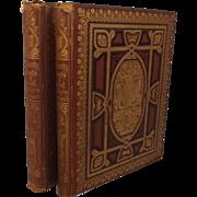 Picturesque Views Of Seats Of Noblemen & Gentlemen Of Great Britain & Ireland 2 Vols