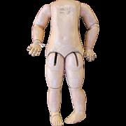 Antique Jumeau Doll Body