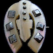 Victorian Cut Steel & Mother of Pearl (MOP) Horseshoe Belt Buckle Motif Pin