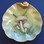 SALE Hand Painted Porcelain Dish Botanical Mushrooms c.1873