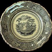 Rare Transferware by Stevenson and Son 1832 Staffordshire Cologne black