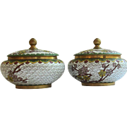 Cloisonne' Pair of Floral Jars with Lid
