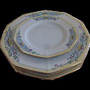 PT Bavaria Tirschenreuth Beaumont set of 5 Hand Painted dinner/desert plate set c 1969