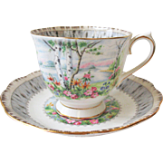 Royal Albert Cup & Saucer Set SILVER BIRCH
