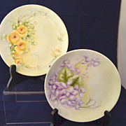 Two Hand Painted Floral 6 Inch Plates