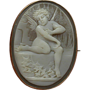 Edwardian Shell Cameo in 9 KT Gold setting – Pendant and Brooch – Eros †...