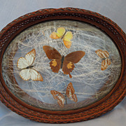 Antique Victorian~ Wicker Glass Tray~ With Butterflies