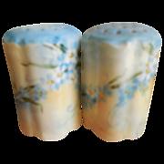 Rosenthal 1920's Robin's Egg Blue Salt and Pepper Shakers-Marked