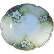 Antique RS Prussia Red Mark 8.75 inch plate-Apple Blossom