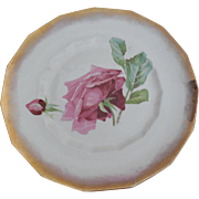 Dresden China 10.5 inches - Floral Pattern Plate