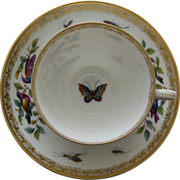 SALE Dresden Porcelain Tea Cup and Saucer by Richard Klemm - Birds, Bugs, and Butterfly