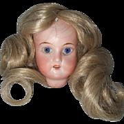 Recknagel Bisque Head and Wig