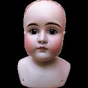 Early Antique Kestner Bisque Alphabet Shoulder Head with Square Teeth